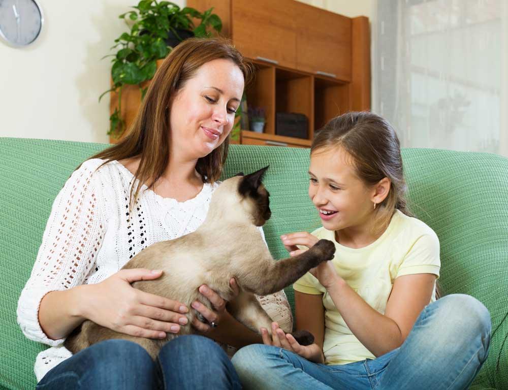 madre e hija con su gato siamés