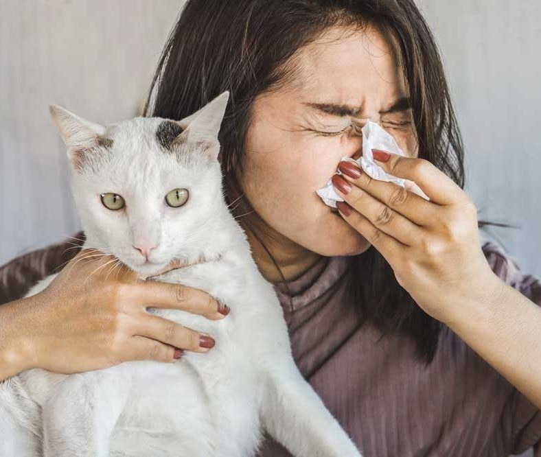 Mujer sujerando gato con coronavirus