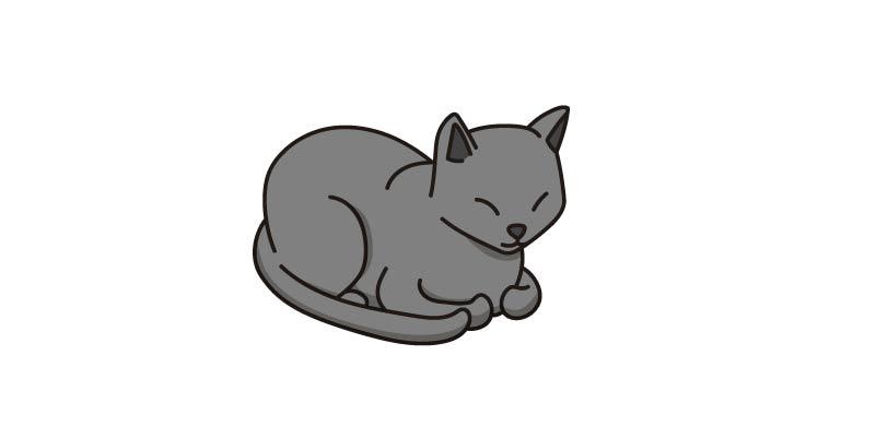 comportamiento gato se esconde