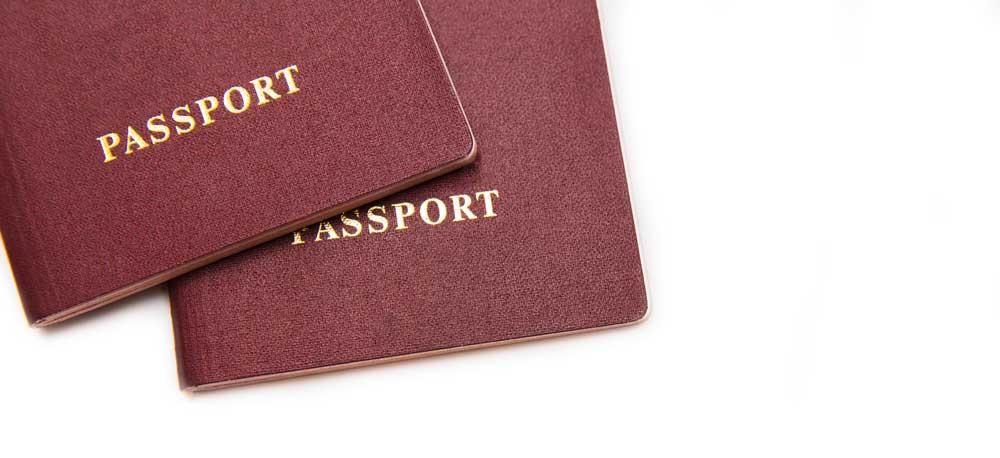 pasaporte para gato