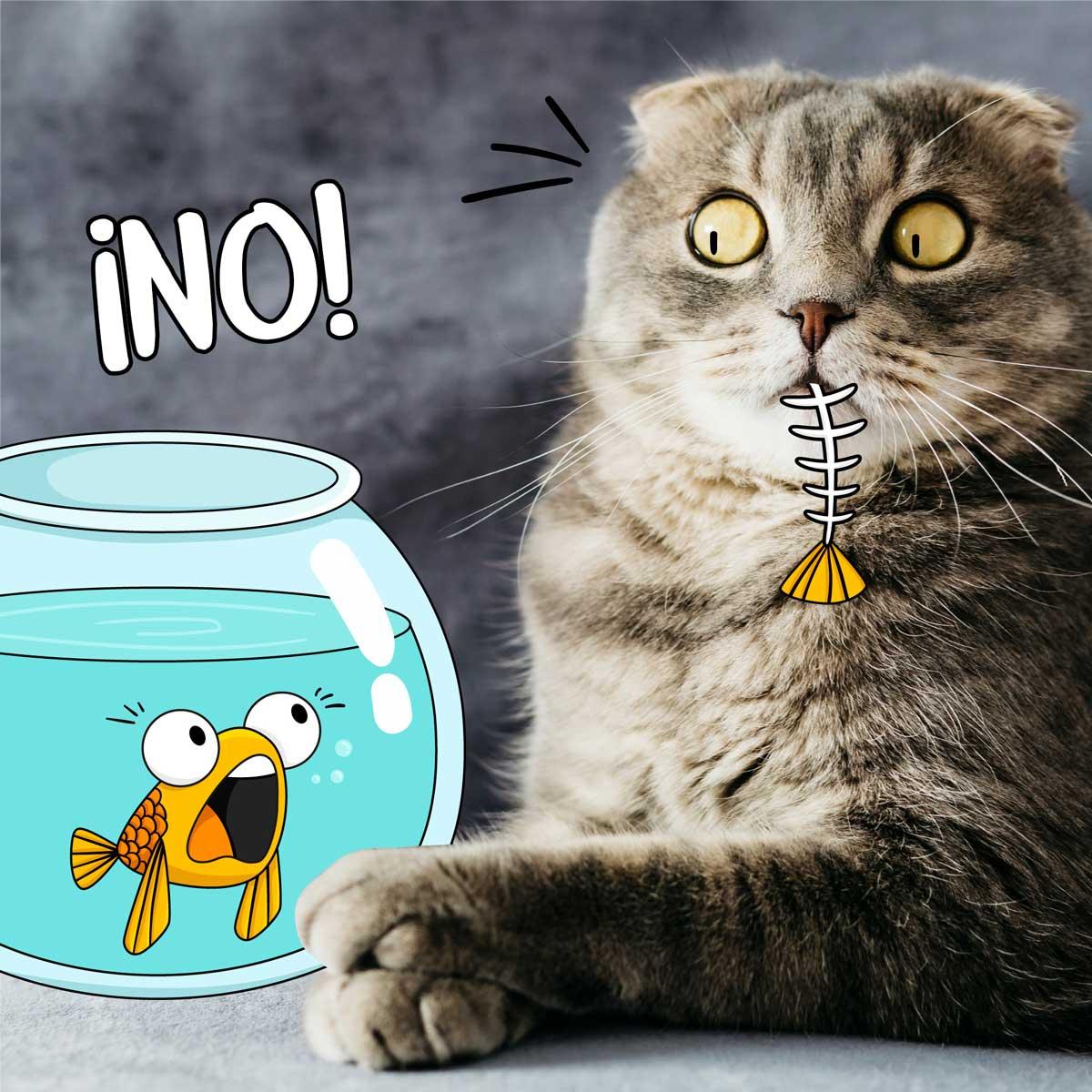 Alimentos prohibidos gatos